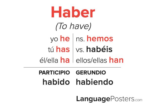 Haber Conjugation